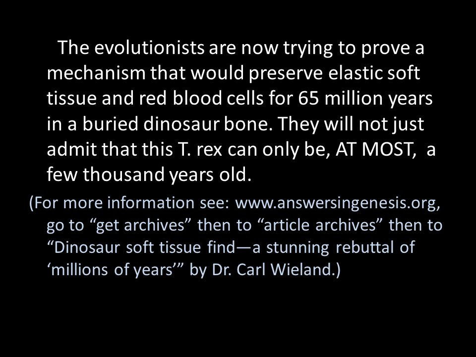 The evolutionists are now trying to prove a mechanism that would preserve elastic soft tissue and red blood cells for 65 million years in a buried dinosaur bone. They will not just admit that this T. rex can only be, AT MOST, a few thousand years old.