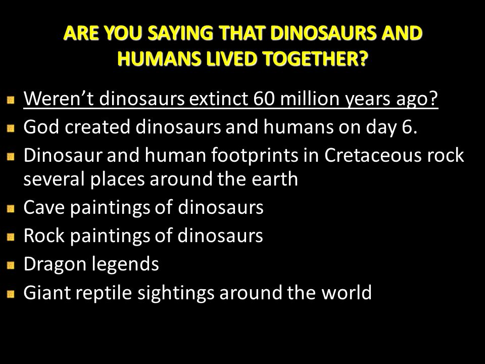 ARE YOU SAYING THAT DINOSAURS AND HUMANS LIVED TOGETHER