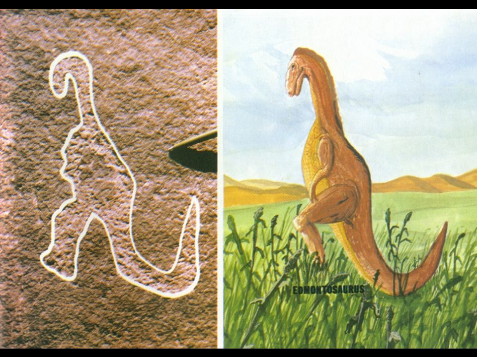 carving compared to dinosaur (great dinosaur mystery)