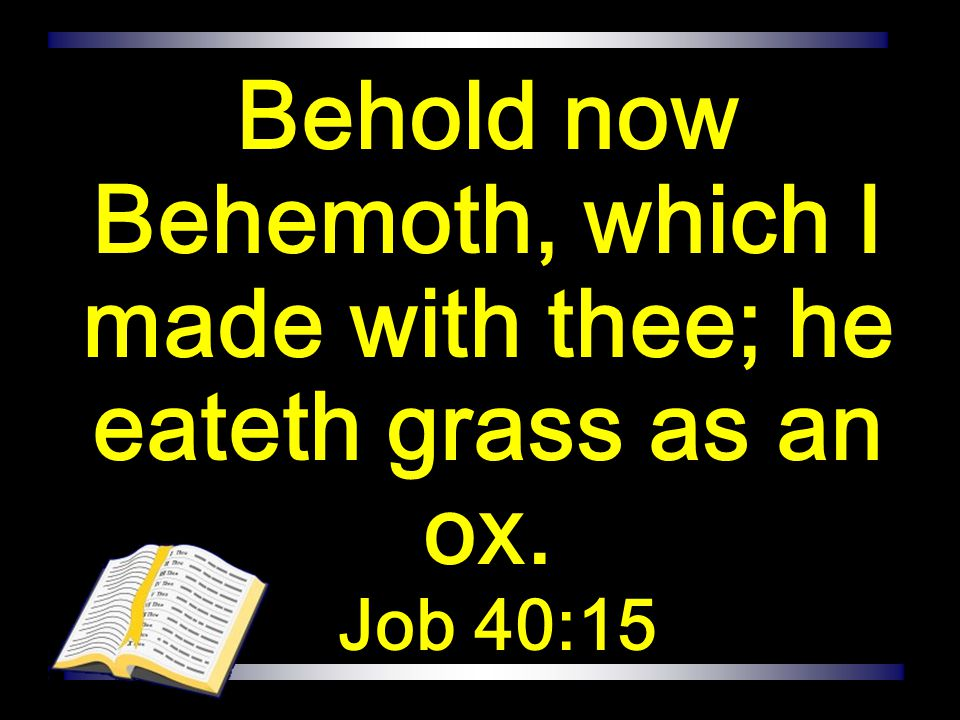 Behold now Behemoth, which I made with thee; he eateth grass as an ox.