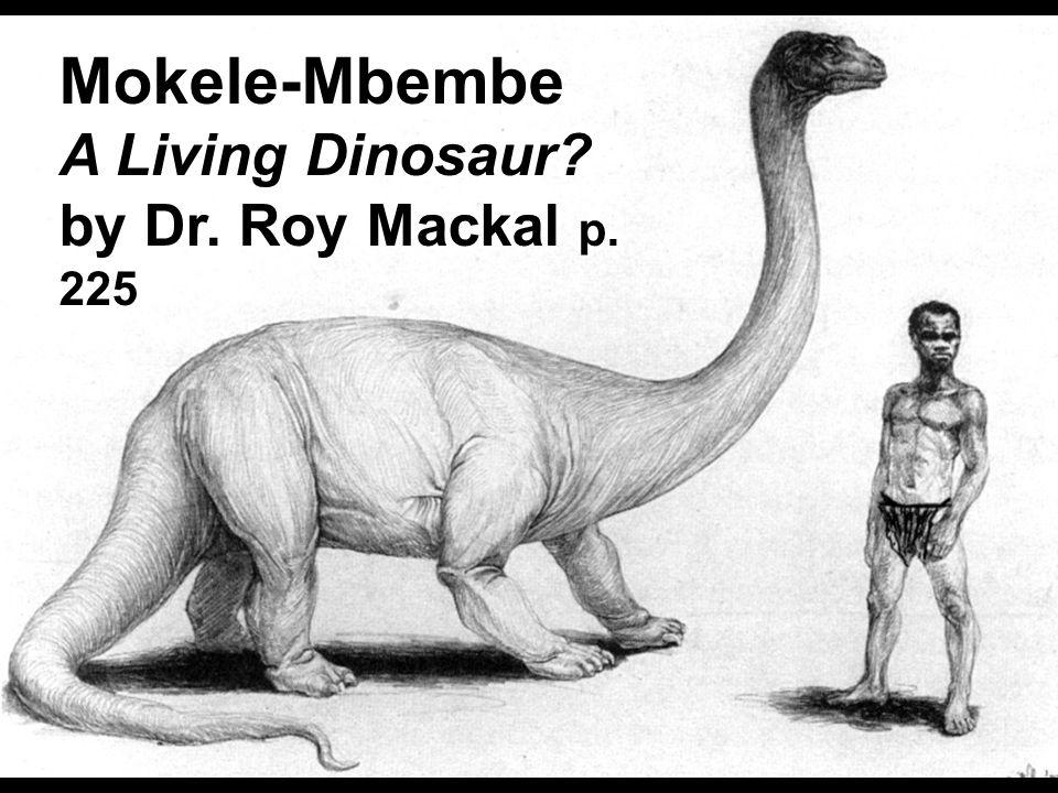 Mokele'mbembe with native