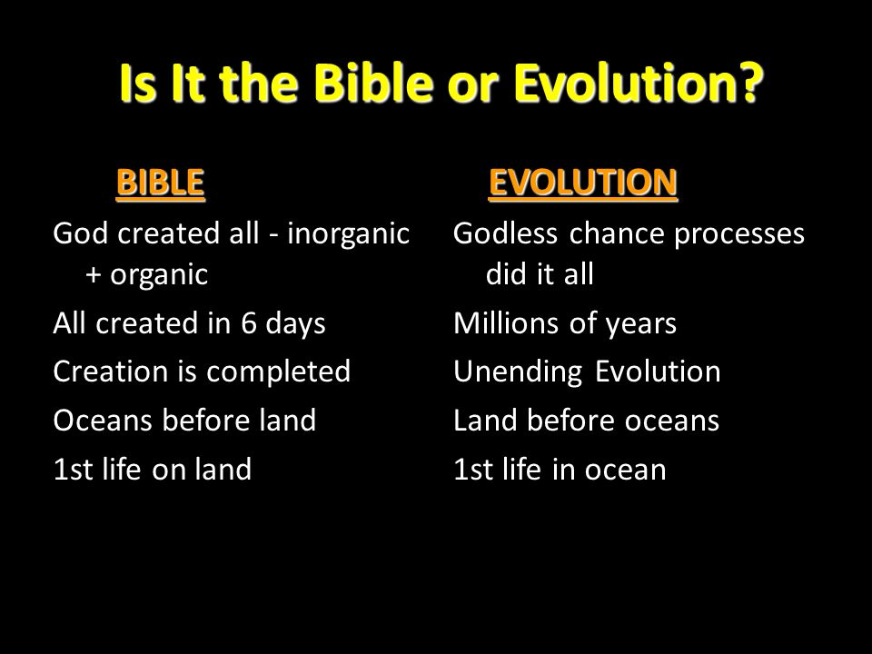 Is It the Bible or Evolution
