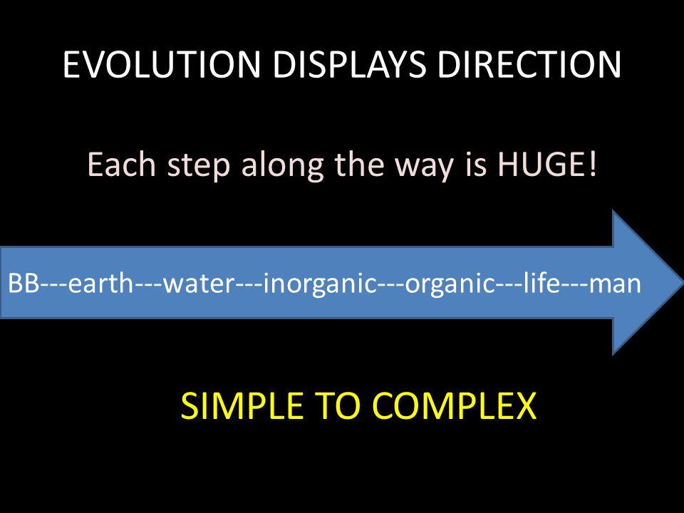 EVOLUTION DISPLAYS DIRECTION