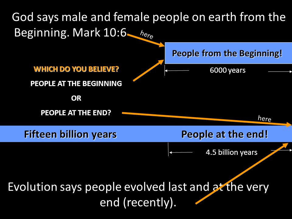 God says male and female people on earth from the Beginning. Mark 10:6