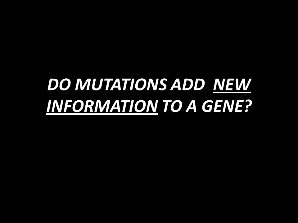 DO MUTATIONS ADD NEW INFORMATION TO A GENE