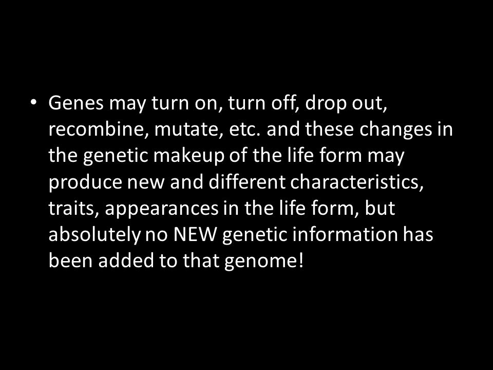 Genes may turn on, turn off, drop out, recombine, mutate, etc