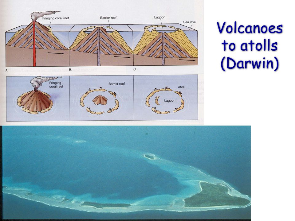Volcanoes to atolls (Darwin)