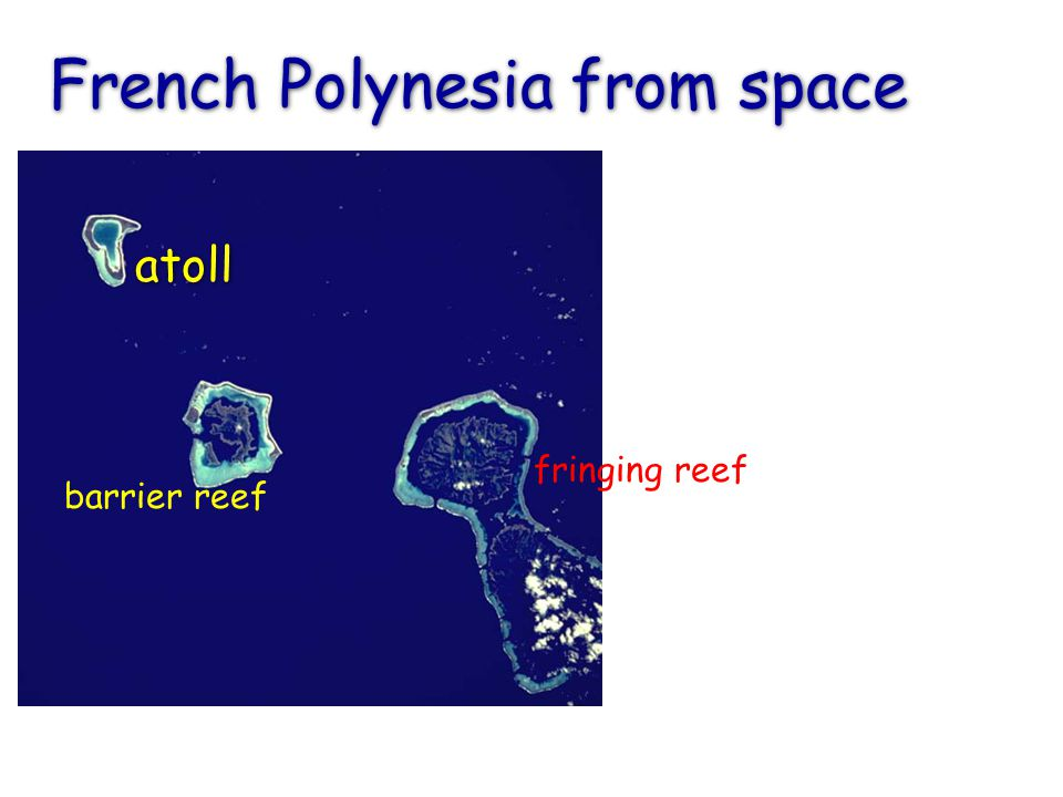 French Polynesia from space