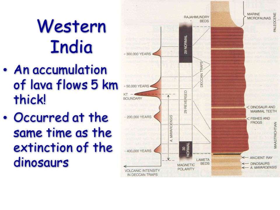 Western India An accumulation of lava flows 5 km thick!