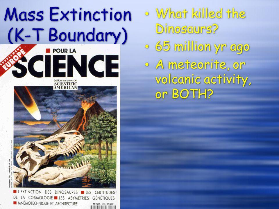 Mass Extinction (K-T Boundary)