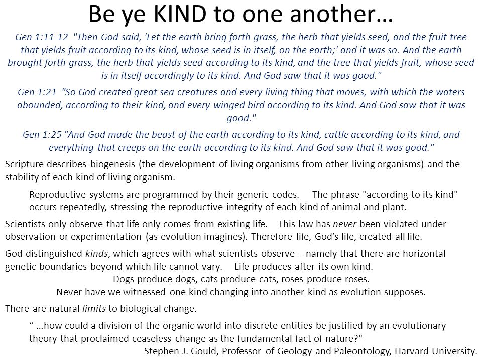 Be ye KIND to one another…