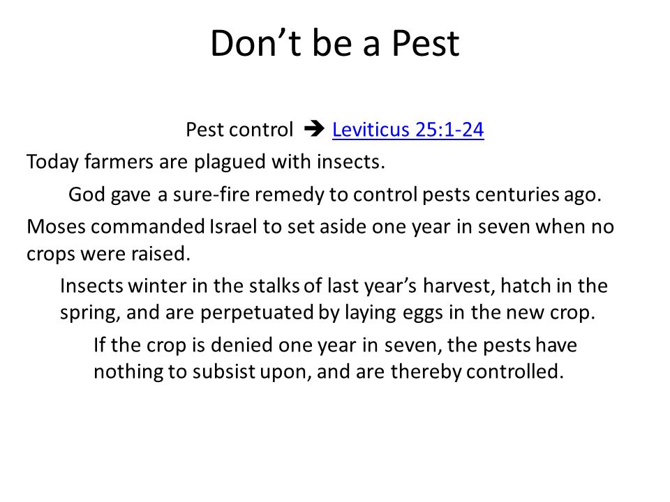 Don't be a Pest Pest control  Leviticus 25:1-24