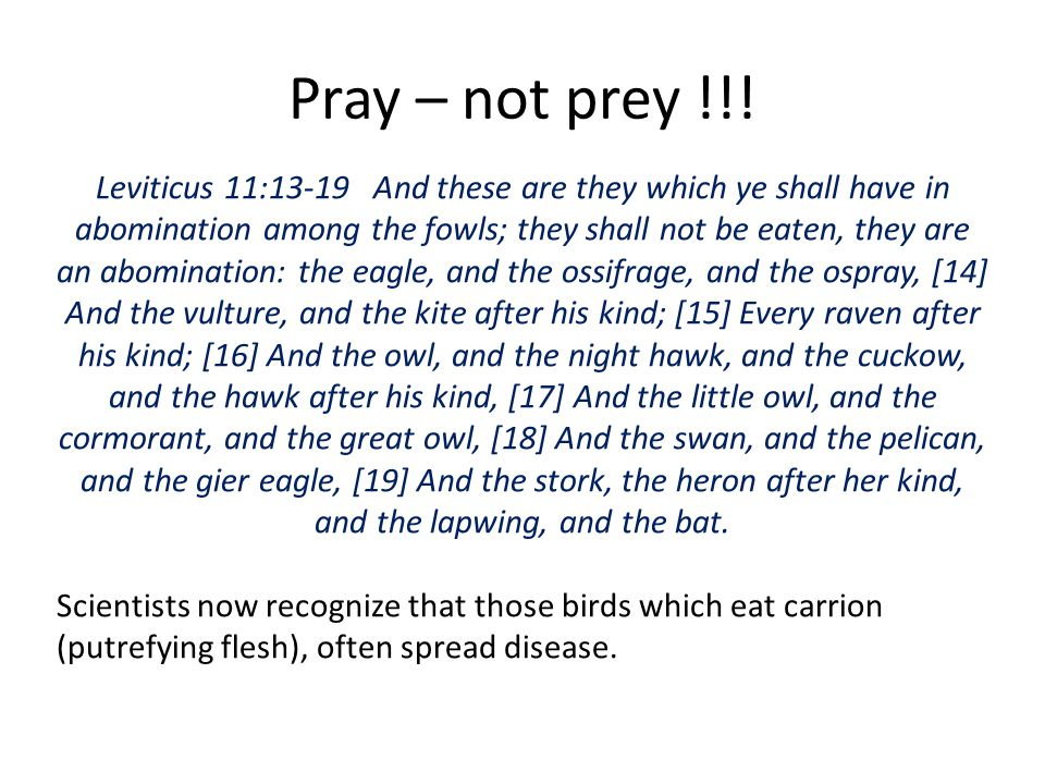 Pray – not prey !!!