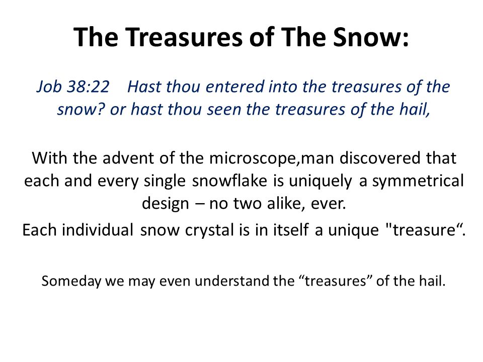 The Treasures of The Snow: