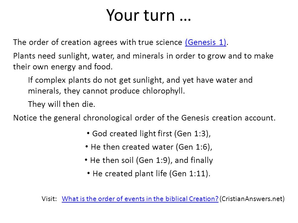 Your turn … The order of creation agrees with true science (Genesis 1).