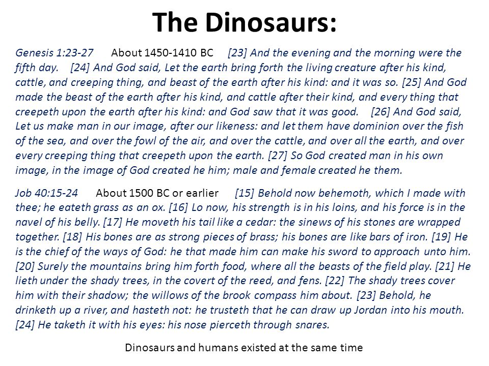 Dinosaurs and humans existed at the same time