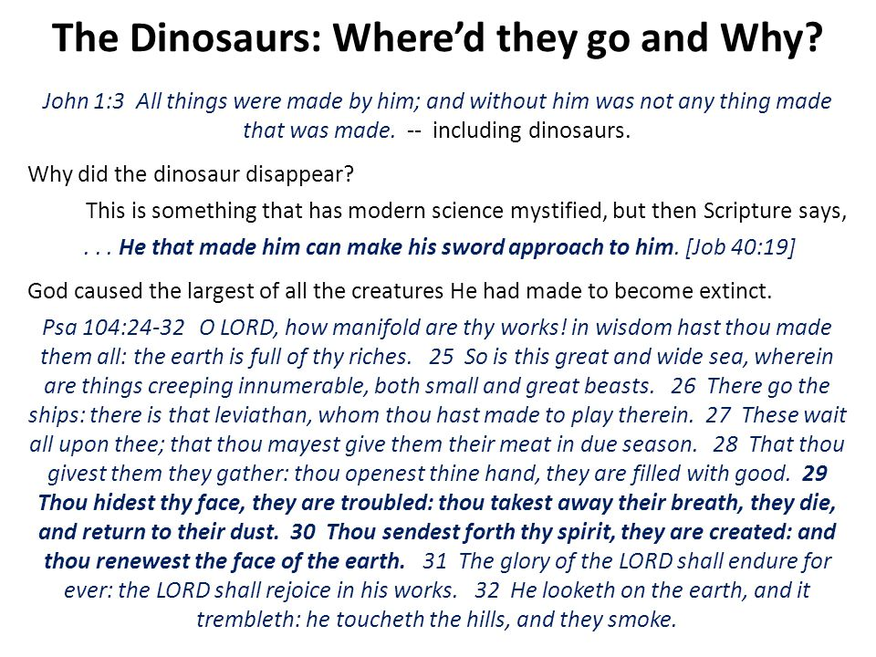 The Dinosaurs: Where'd they go and Why