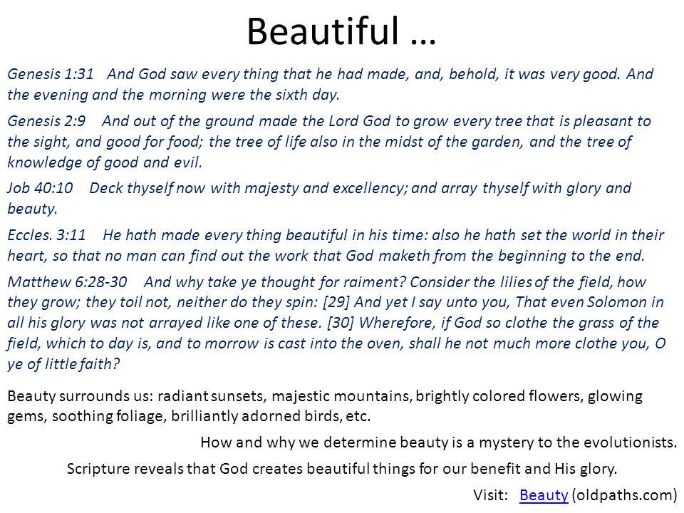 Beautiful …