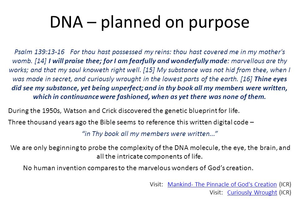 DNA – planned on purpose