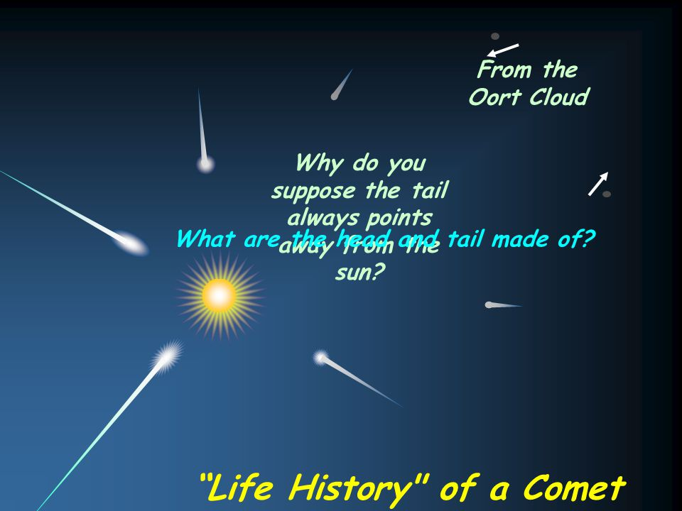 Life History of a Comet
