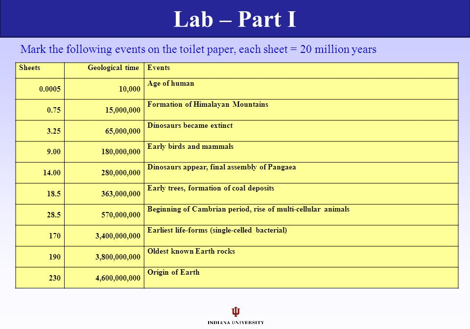 Lab – Part I Mark the following events on the toilet paper, each sheet = 20 million years. Sheets.