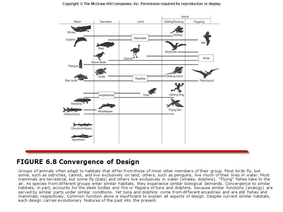 FIGURE 6.8 Convergence of Design