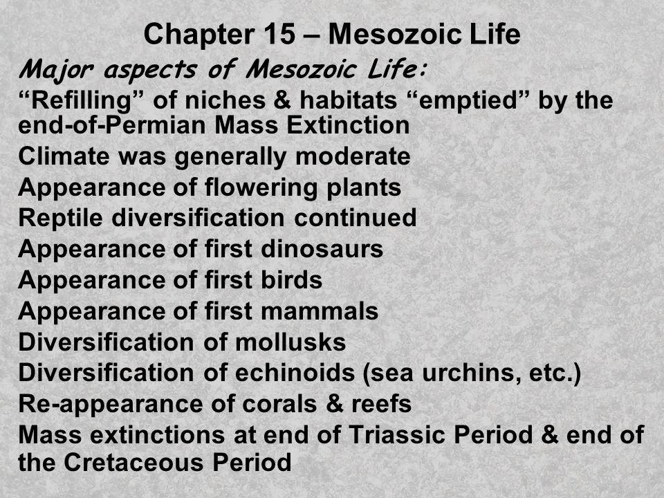 Chapter 15 – Mesozoic Life