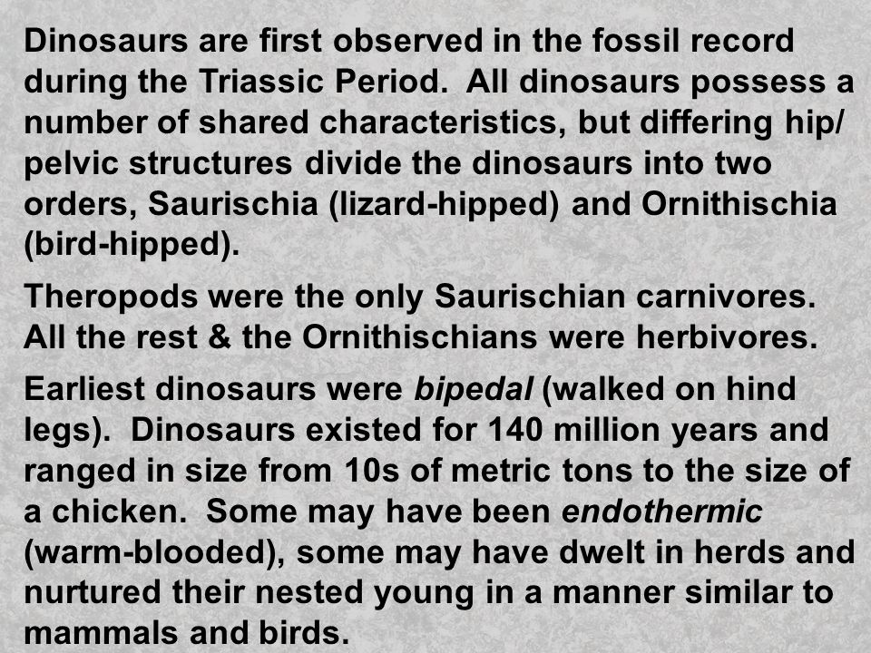 Dinosaurs are first observed in the fossil record during the Triassic Period. All dinosaurs possess a number of shared characteristics, but differing hip/ pelvic structures divide the dinosaurs into two orders, Saurischia (lizard-hipped) and Ornithischia