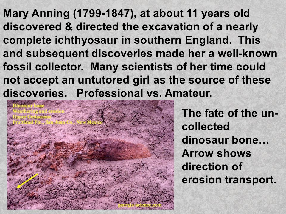 Mary Anning (1799-1847), at about 11 years old discovered & directed the excavation of a nearly complete ichthyosaur in southern England. This and subsequent discoveries made her a well-known fossil collector. Many scientists of her time could not accept an untutored girl as the source of these discoveries. Professional vs. Amateur.
