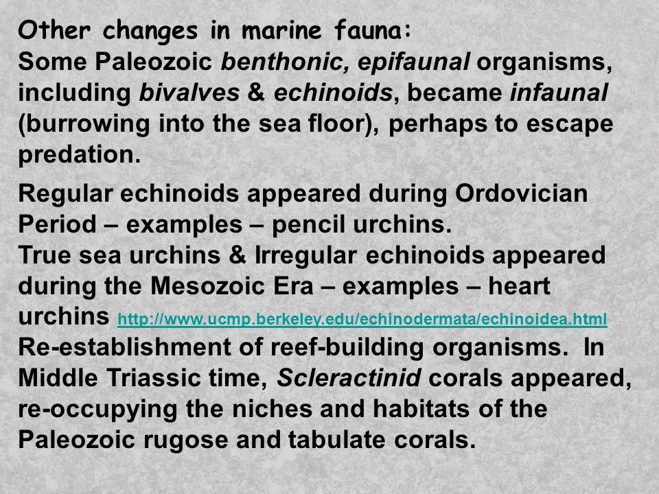 Other changes in marine fauna: