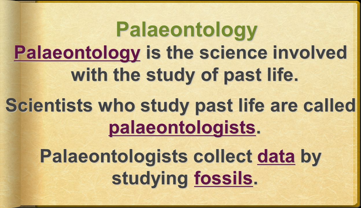 Palaeontology