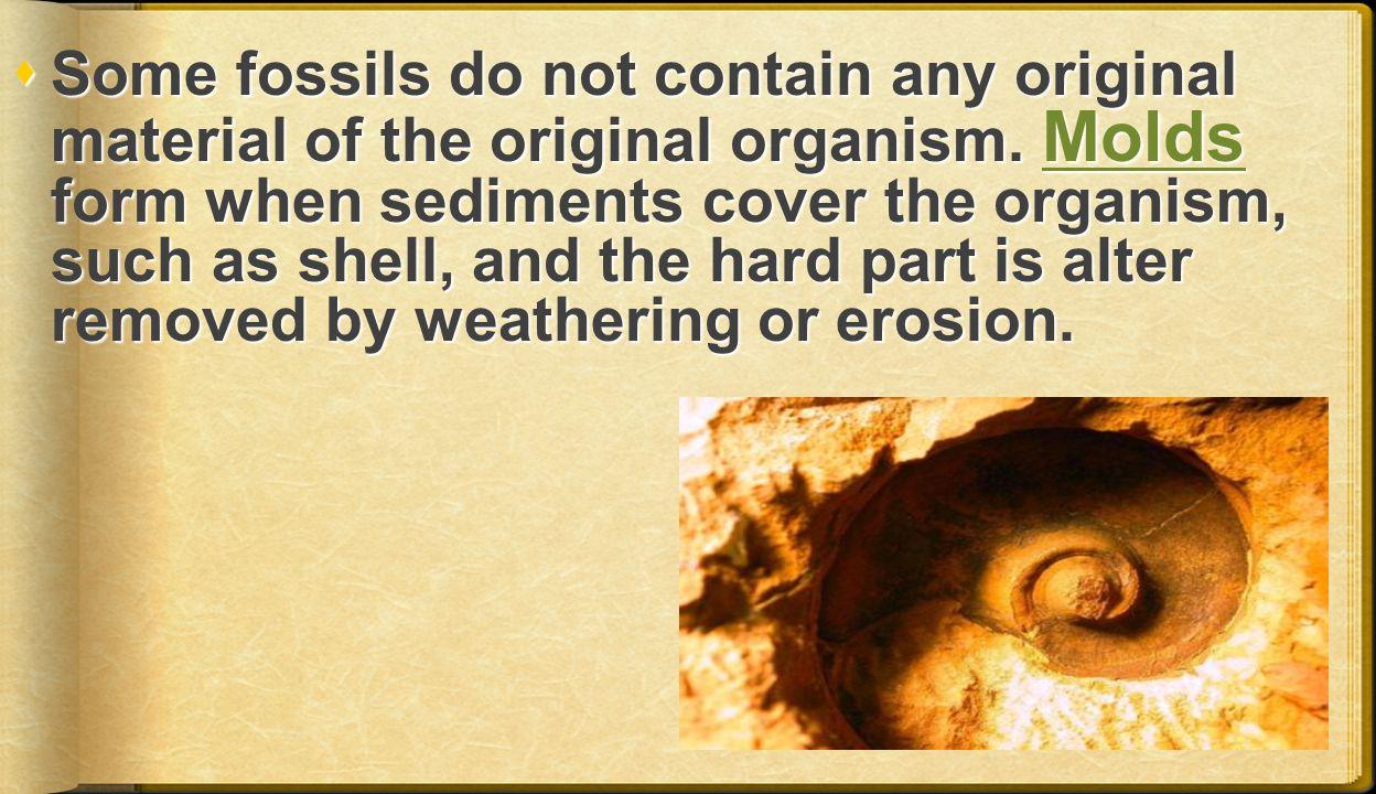 Some fossils do not contain any original material of the original organism.