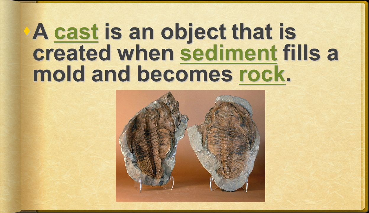 A cast is an object that is created when sediment fills a mold and becomes rock.