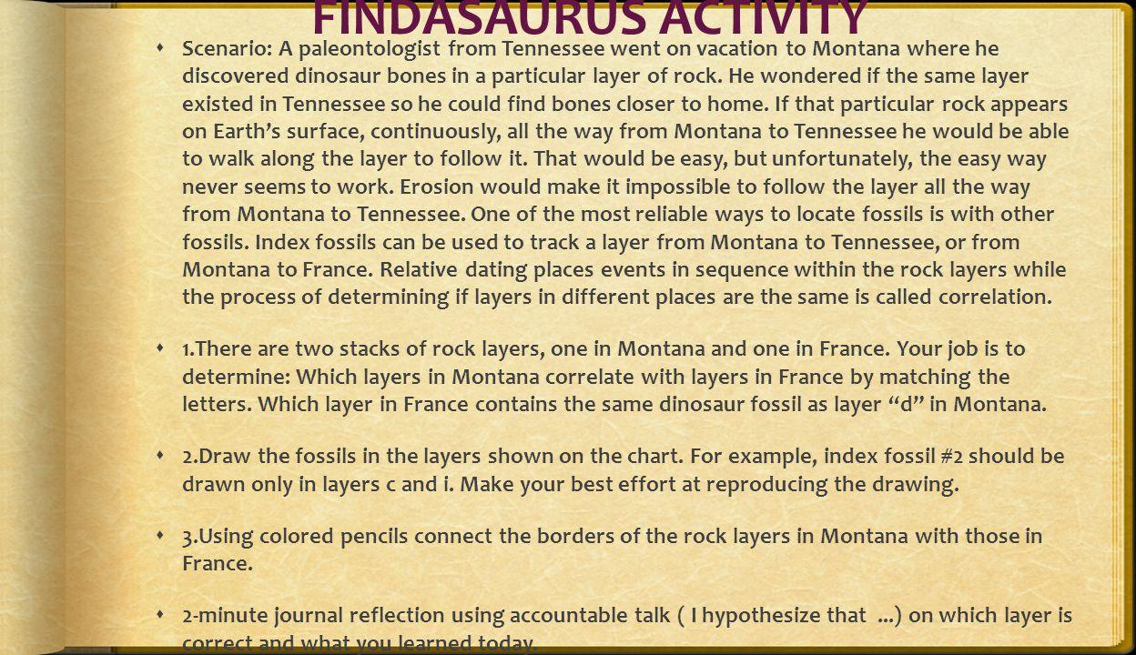 FINDASAURUS ACTIVITY