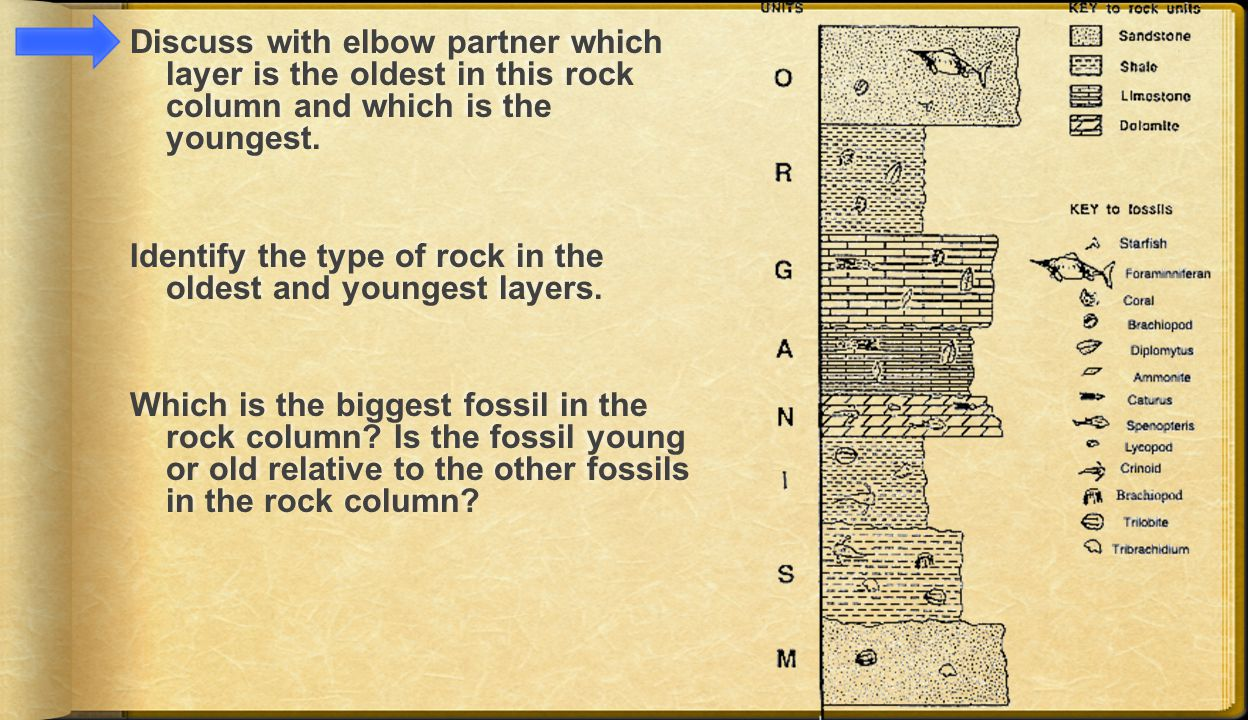 Discuss with elbow partner which layer is the oldest in this rock column and which is the youngest.