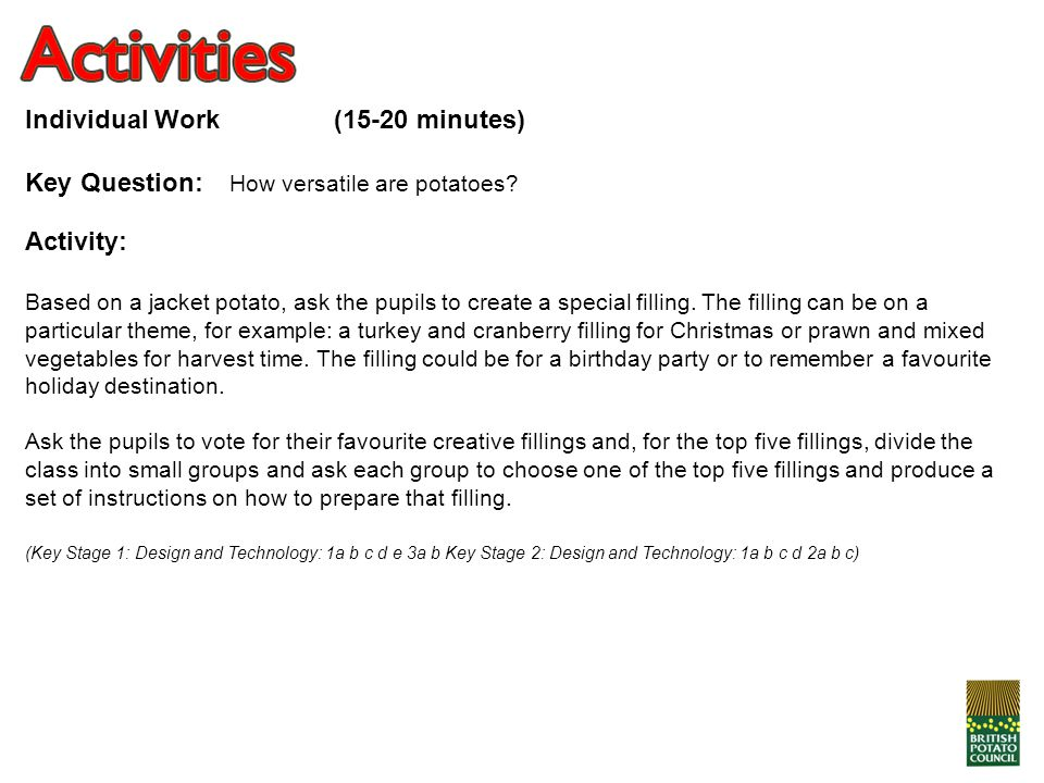 Individual Work (15-20 minutes)