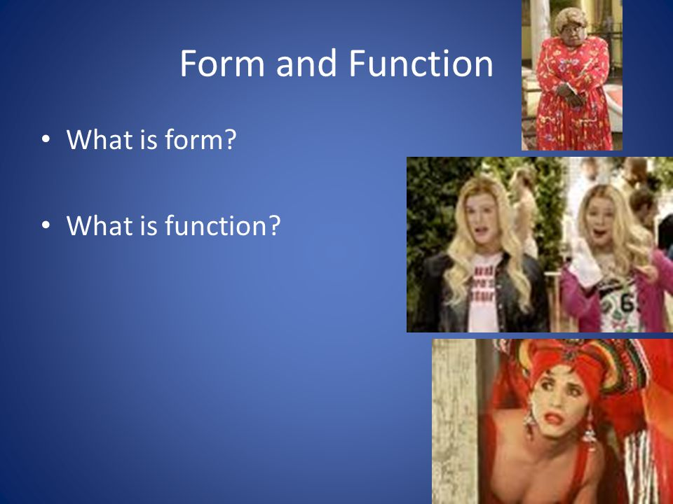 Form and Function What is form What is function