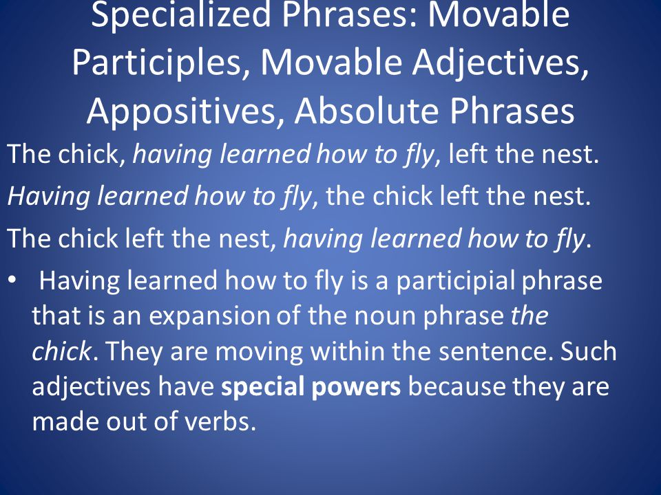 Specialized Phrases: Movable Participles, Movable Adjectives, Appositives, Absolute Phrases