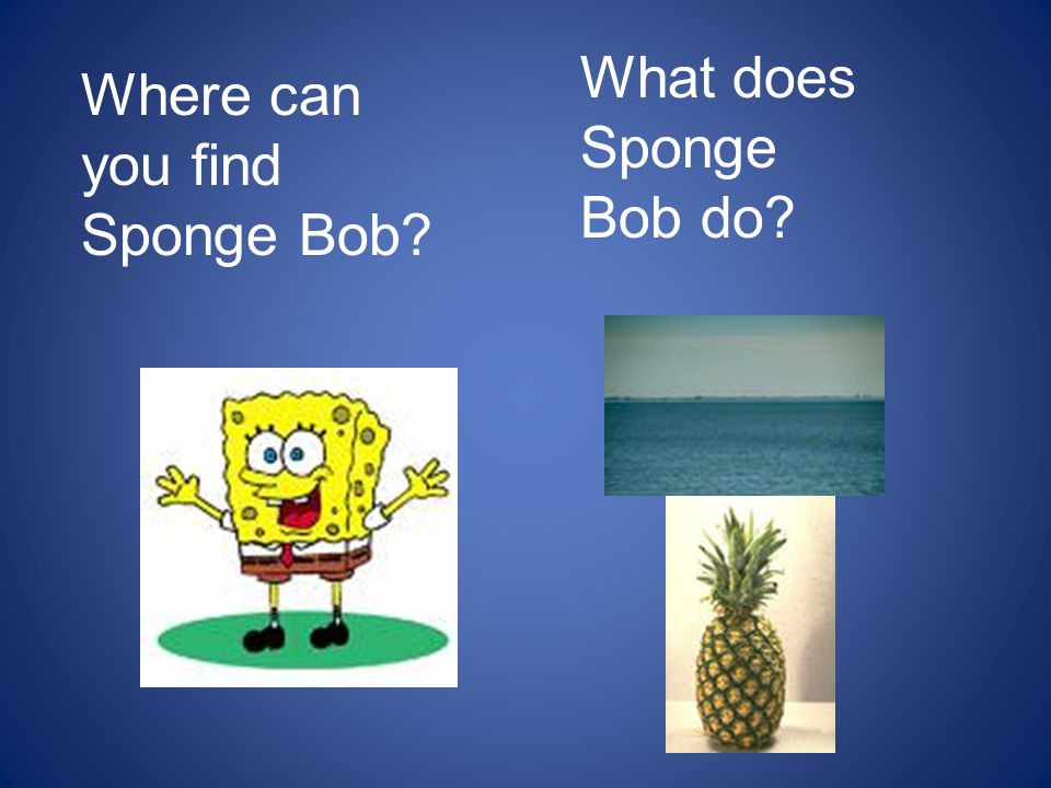 What does Sponge Bob do Where can you find Sponge Bob