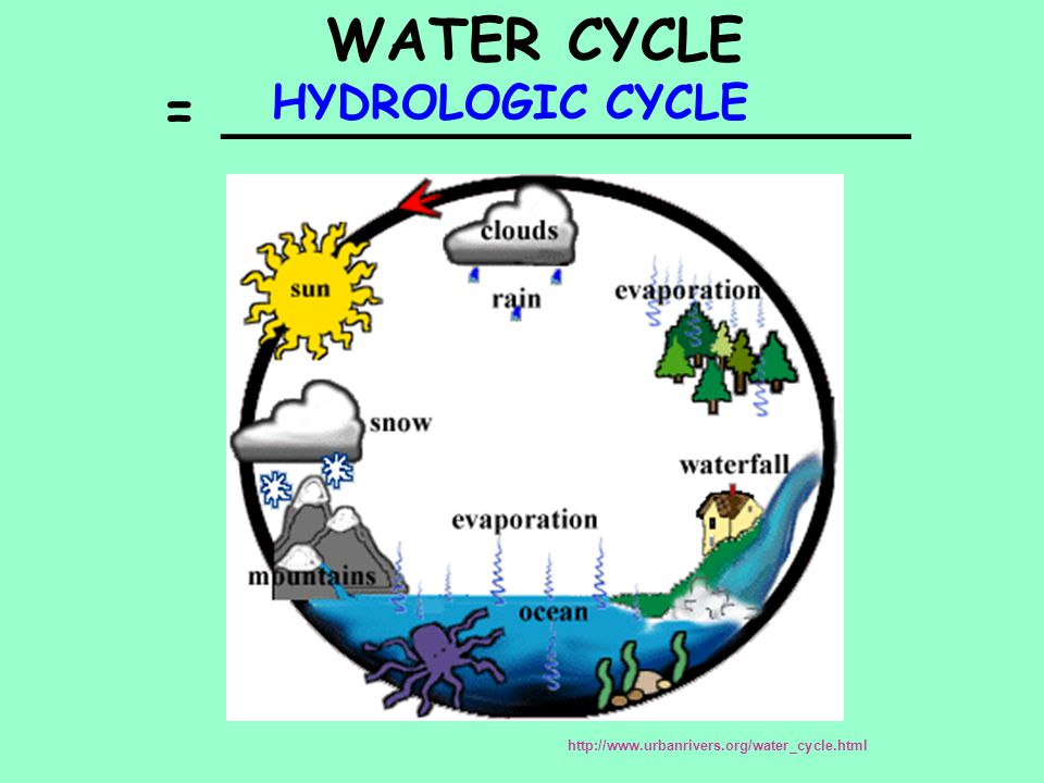 WATER CYCLE = ___________________