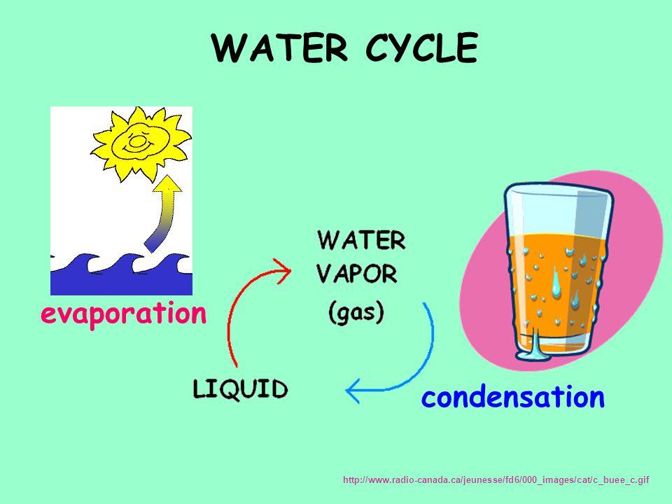 WATER CYCLE evaporation condensation