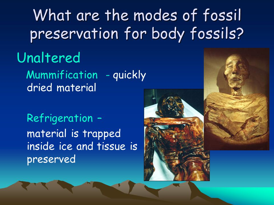 What are the modes of fossil preservation for body fossils