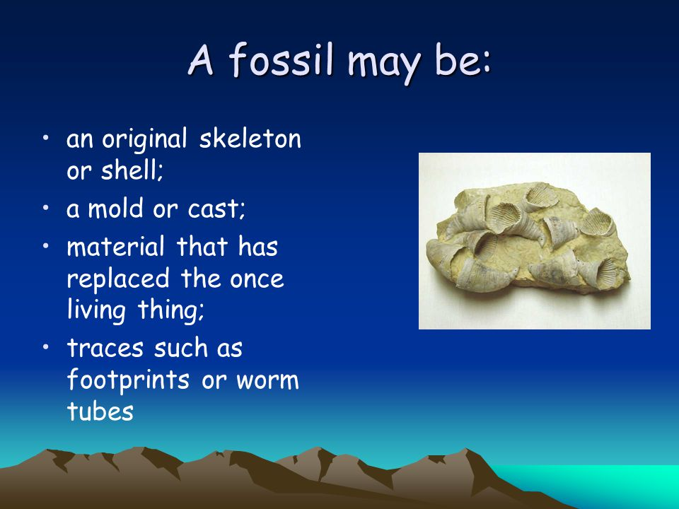A fossil may be: an original skeleton or shell; a mold or cast;