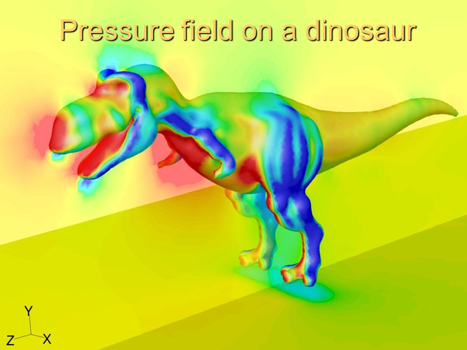 Pressure field on a dinosaur