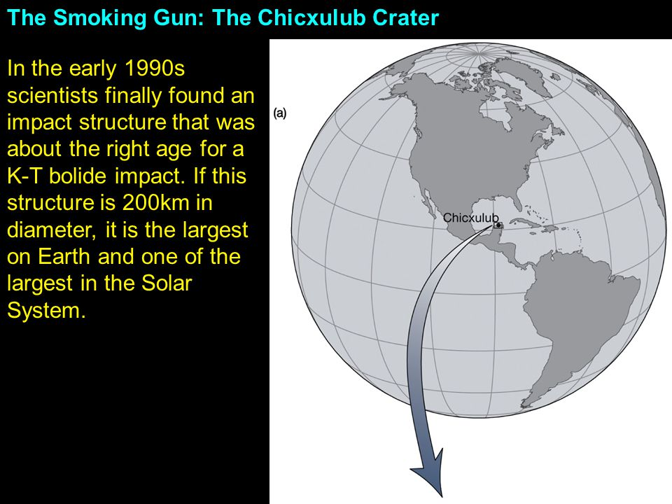 The Smoking Gun: The Chicxulub Crater