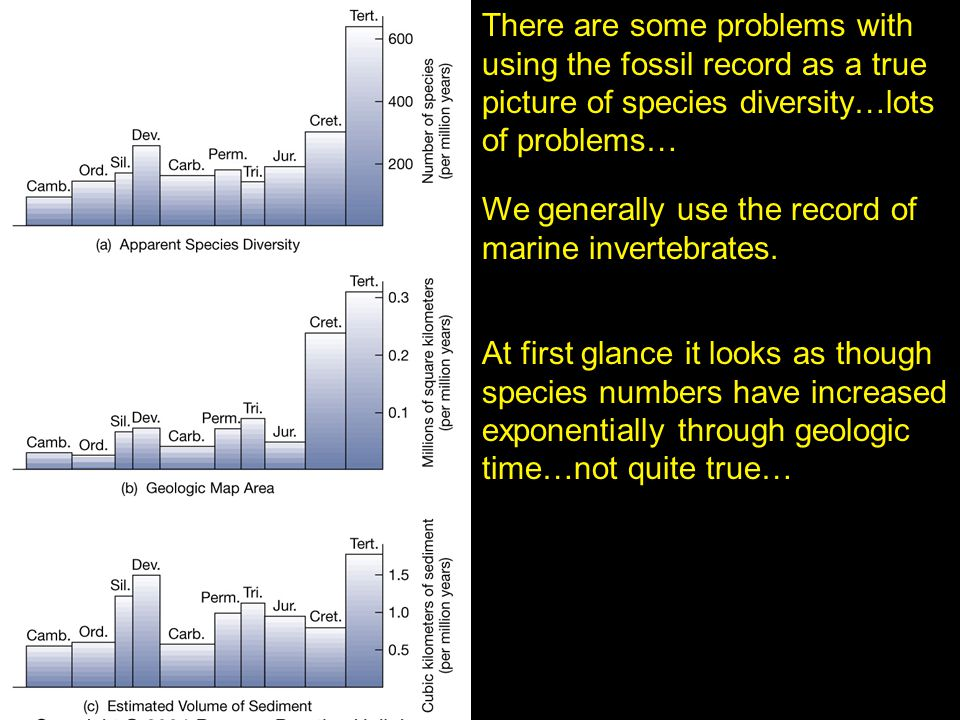 There are some problems with using the fossil record as a true picture of species diversity…lots of problems…