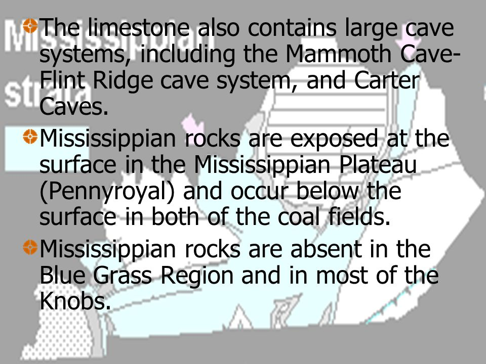 The limestone also contains large cave systems, including the Mammoth Cave-Flint Ridge cave system, and Carter Caves.