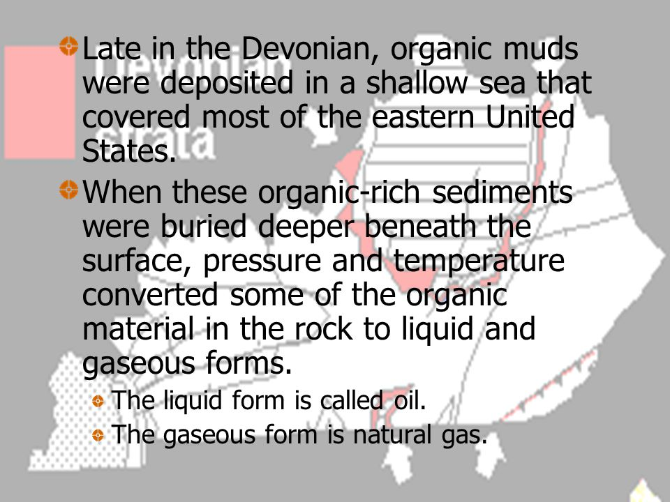 Late in the Devonian, organic muds were deposited in a shallow sea that covered most of the eastern United States.