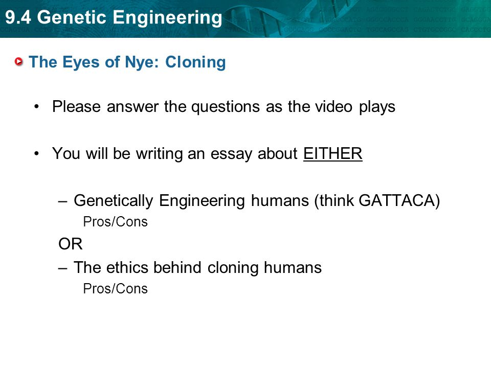 genetic engineering ethics essay