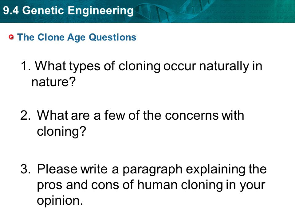The Clone Age Questions